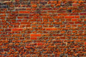 brickwall by Mittelfranke