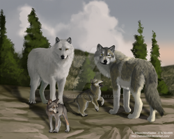 The Pack - WQ Art Contest by WindSeeker