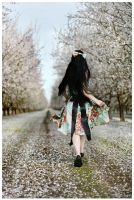 To Spring. by sa-photographs