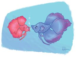 Betta fish  by Rey-Paez