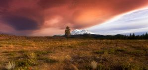 Under the Endless Calamity I Wandered by Jordan-Roberts