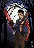 Evil Dead II by Doyle-Ryder