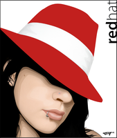 2ToneStyle - Redhat Wallpaper by DanDeath