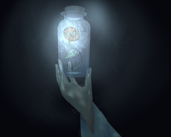 Bottled light by El-Chaan