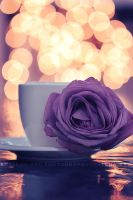 Cup of Bokeh by a-moora-h