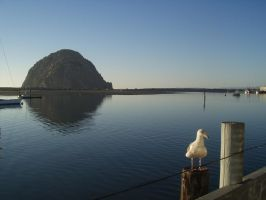 Morro Bay by dusty1215