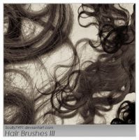 Hair Brushes III by Scully7491