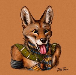 The Happiest Coyote by TitusWeiss
