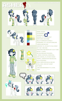 MLP OC - Asher Reference Sheet by StarlightRaven14