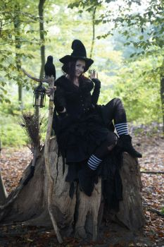 Stock - Halloween special witch on a tree by S-T-A-R-gazer