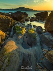 13993-1000s by Philippe-Albanel