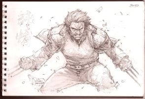 Logan - The Wolverine by werder