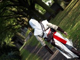 Assassins Creed - In the Shade by ChocolateDecadence