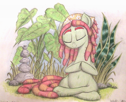 Chakra Garden by TheFriendlyElephant