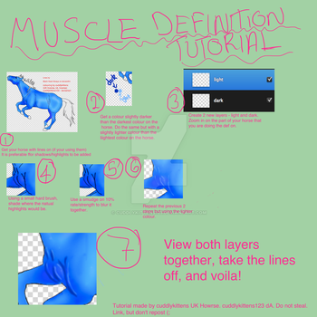 Horse muscle definition tutorial by cuddlykittens123