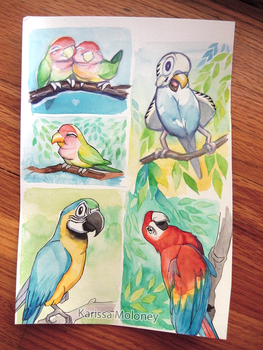 Watercolor Parrots are the bomb by Karisean
