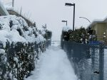 Snow Walkway by wolfwings1