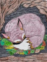 Fox in Burrow by WiccaSmurf