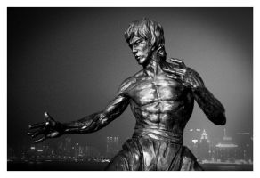 bruce lee by sauter