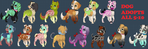 Dog adopts by Leafpelt41603