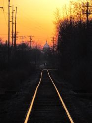 The Trian by buzzwig