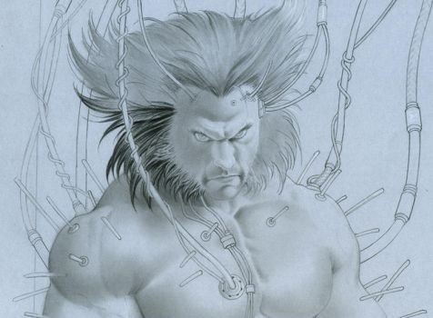 Work In Progress-wolverine by petervale