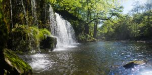 Waterfall Country Pt.1 by Thyers