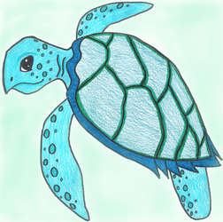 Maturin the Turtle by SSL13