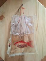 Goldfish In A Bag.Work In Progress by ivanhooart