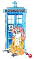 Doctor #19  and TARDIS by CCB-18