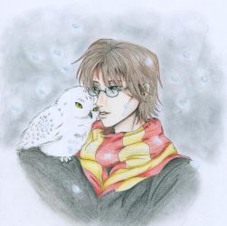 Harry and Hedwig by Paper-Girl