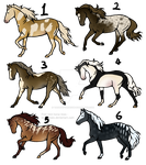 20 point horse adopts [3/6] -OPEN- by TheAdoptArtist