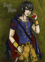 snow white, witch hunter by selewyn