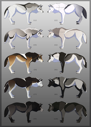 Wolf adopts [CLOSED] by TornTethers