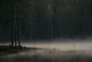 Misty lake by oprust
