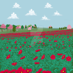 Field of poppies by tamygm21