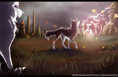 . WoLF . A Storm Is Coming . by ShadowCatsKey