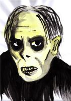 Lon Chaney as the Phantom by soffl