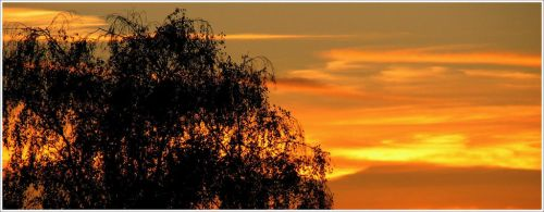 Just Another Sunset by enervation