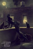 Catwoman: Night Prowlers by Jeffach