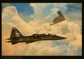 T-38 Talon / B-2 Spirit by Distantstarr