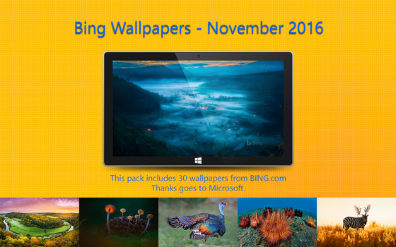 Bing Wallpapers - November 2016 by Misaki2009