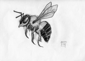 Bumble Bee by shroomstone