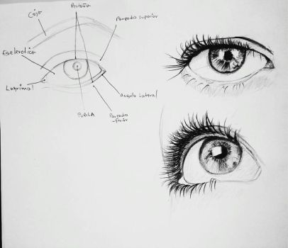 How to draw a eye by franklinsh