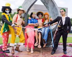 One Piece Time Skip New World Cosplay by firecloak