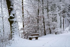 Cold Resting Place by Aenea-Jones