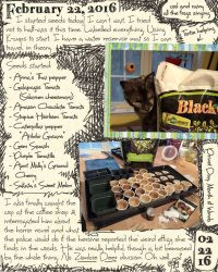 Seed Starting Journal by ursulav