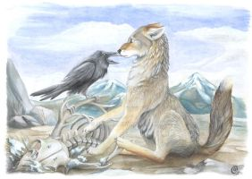 Kenket Meets The Coyote by olvice