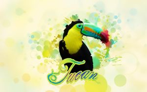 Tucan by Dsings