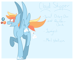 cloud skipper